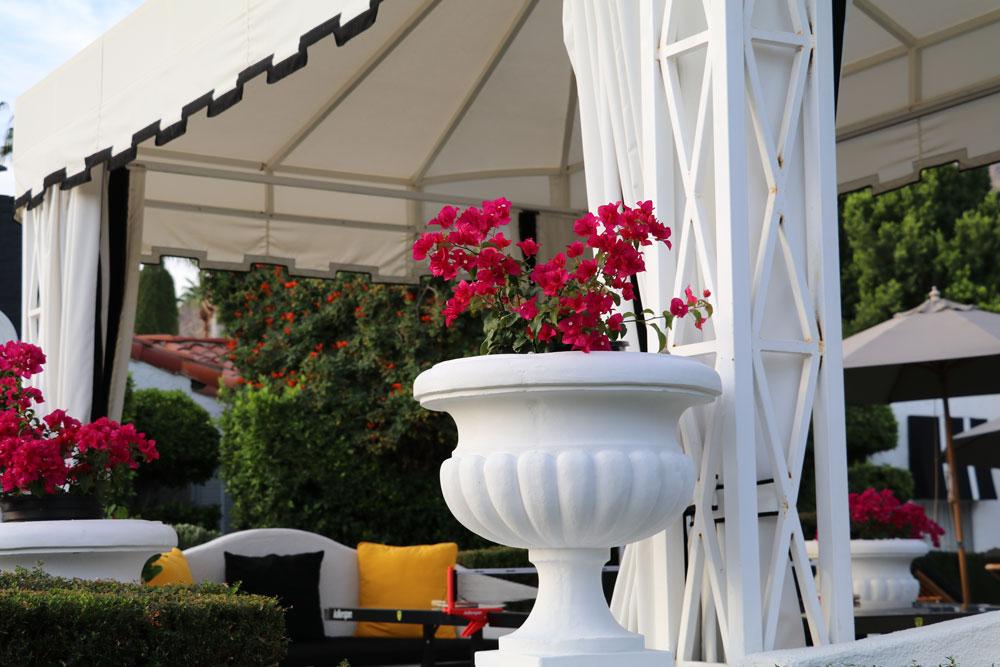 Das Hotel Avalon in Palm Springs ist ein idealer Ort zum Entspannen - und vielleicht sogar Stars zu sehen.