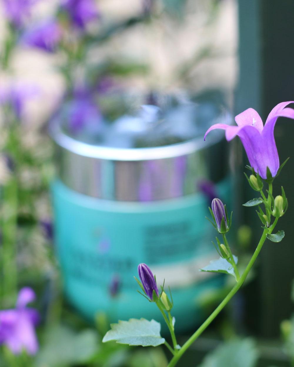 System Professional goes green: Die neue Pflegelinie inessence ist inspiriert von der Natur - und Du kannst sie gewinnen!