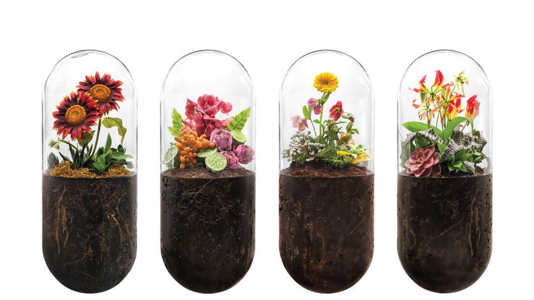 Biomazing: Naturkosmetik nach strengsten Kriterien