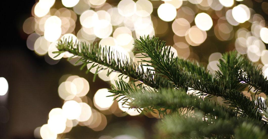 sonrisa wünscht der besten Leserschaft aller Zeiten wunderschöne Feiertage 2019 mit allem, was glücklich und damit auch schön macht!
