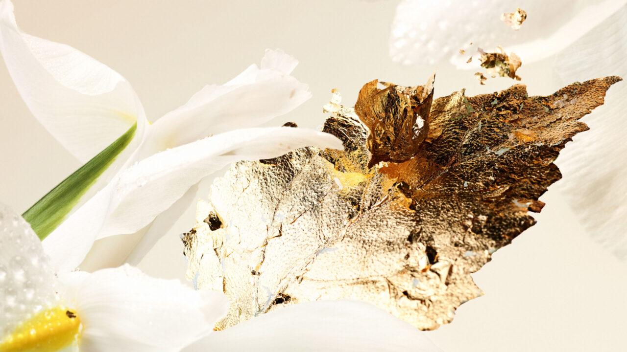 Splendid Bvlgari Patchouli Tentation ist eine wunderschöne Hommage an einen Duftstoff, der oft polarisiert.