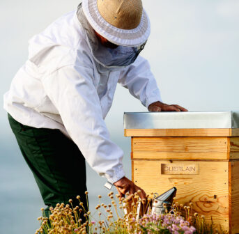 Seit 1853 die Biene wurde zum Symbol für Guerlain wurde, schmückt sie nicht nur die kultigen Flakons, sondern inspiriert die Nachfahren des Firmenbegründers auch immer wieder zu neuen Hautpflege-Kreationen –und vielen Projekten zum Schutz von Bienen.
