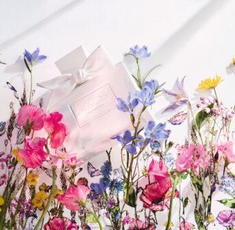 sonrisa war mit Dior in Grasse, von sie Dir alle Informationen zum neuen Damenduft Miss Dior Eau de Parfum mitbegracht hat.